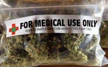 Cannabis terapeutica prodotta dallo Stato, firmato l'accordo