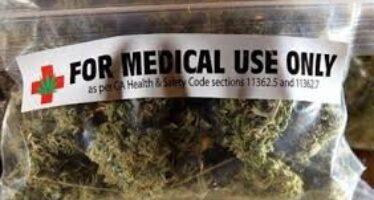Cannabis contro il dolore, sì del governo anche il medico di base potrà fare la ricetta