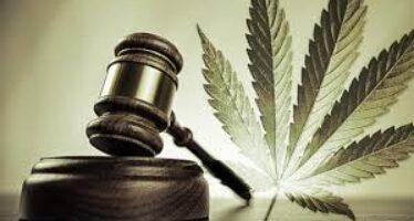 Droghe leggere e pesanti La differenza torna legge