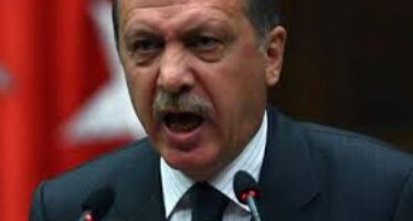 Il pugno di Erdogan