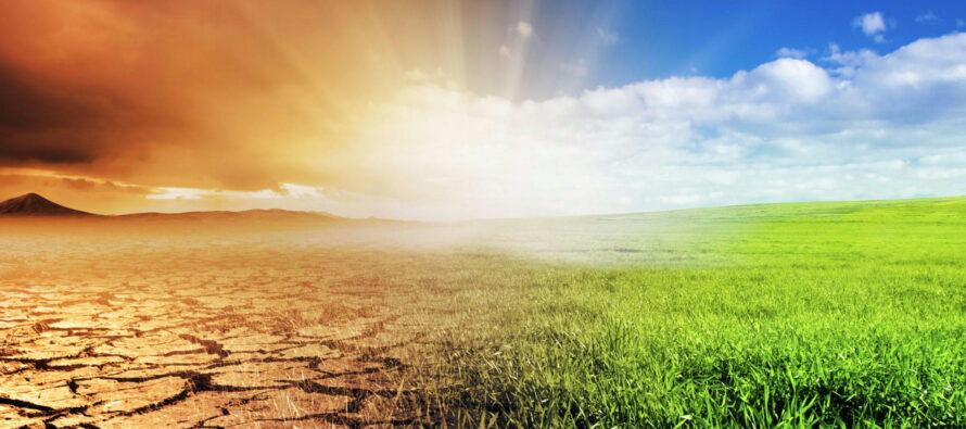Salveremo la Terra con l'ottimismo