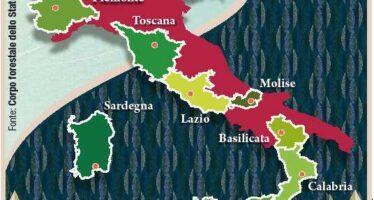 Un terzo del territorio è verde Le foreste conquistano l'Italia