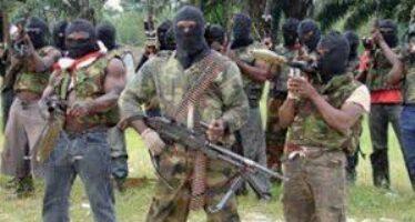 """Spari sui fedeli a messa Boko Haram fa strage di cristiani """"I morti sono decine"""""""
