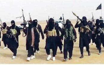 Bombe, sequestri, kamikaze Così Isis ha oscurato Al Qaeda