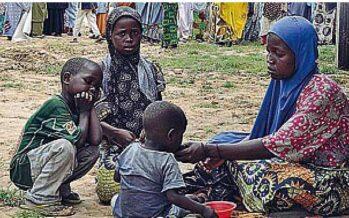 Il cardinale nigeriano: parlare a Boko Haram