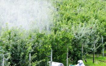 Il primo comune vietato ai pesticidi la rivoluzione nella valle delle mele