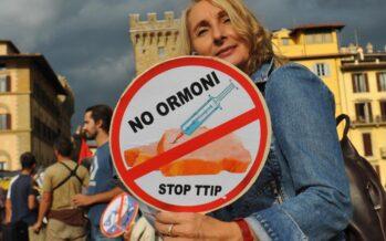 TTIP Papers: i nuovi testi del negoziato transatlantico desecretati da Greenpeace