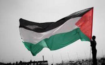 Il riconoscimento della Palestina è l'unica soluzione