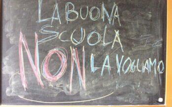 Il precariato a scuola è illegale e la Consulta grazia Renzi