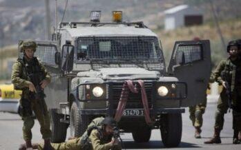 Sospesi, per ora, gli autobus dell'apartheid