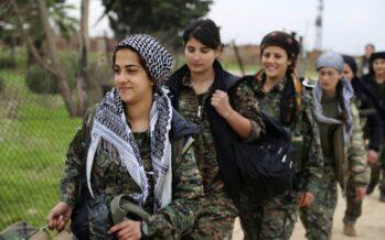 Kurdistan.Rapporto dalla battaglia