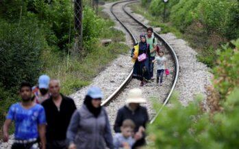 Ungheria, la «barriera» di 175 chilometri entra nella fase esecutiva