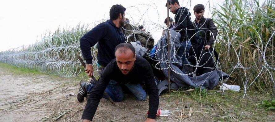 """Muri e gabbie,l'Ungheria di Orbán sfida l'Europa: """"In carcere tutti gli illegali"""""""
