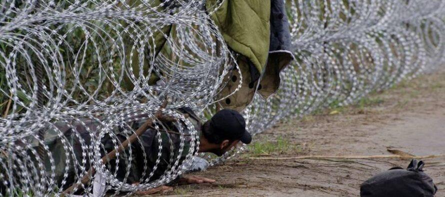 Nicholas Kristof. Mio padre fuggì dall'Europa quei profughi siamo tutti noi