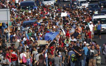 Bandiera azzurra e foto della Merkel tra i profughi a piedi via da Budapest