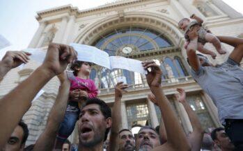 Tra i dannati nella stazione di Budapest sotto i lacrimogeni