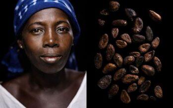 Bambini schiavi nei campi di cacao Nestlé sotto accusa