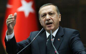 Erdo?an's New Turkey Project