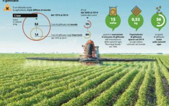 Battaglia sul glifosato l'erbicida della birra che divide l'Europa