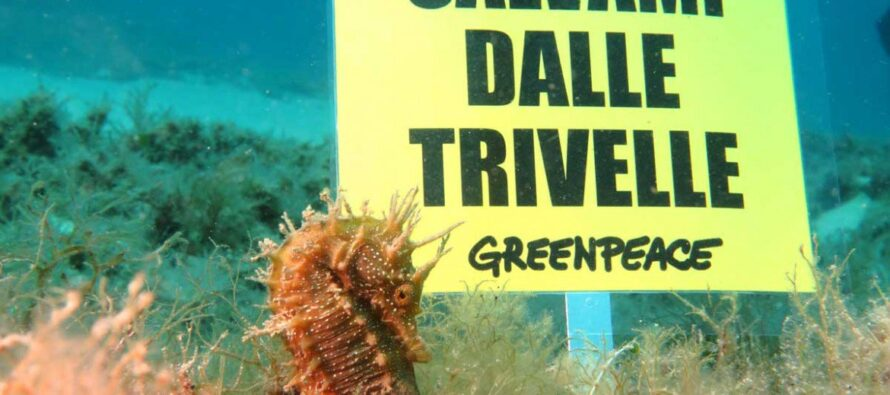 Greenpeace. Alessandro Giannì: «Da trivelle e nucleare nessuna svolta ecologica»