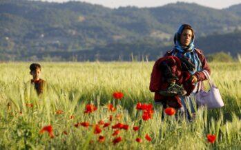 In macerie il campo di Idomeni ma i migranti vagano ancora verso la rotta balcanica