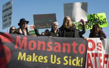 Bayer-Monsanto, la fusione moltiplica i pericoli