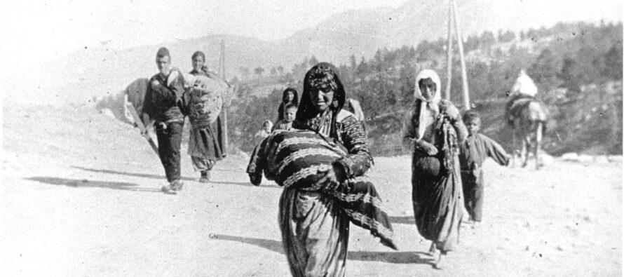 Armeni, fu genocidio