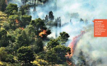 """La Sicilia va in fiamme centinaia di roghi e scuole evacuate """"Atti dolosi e criminali"""""""