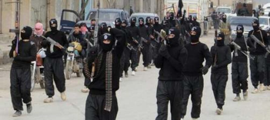 La banalità del terrore