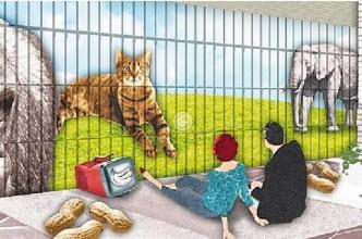 animali-gabbie