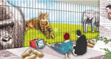 ANIMAL RIGHTS – ? – ANIMAL WRONGS