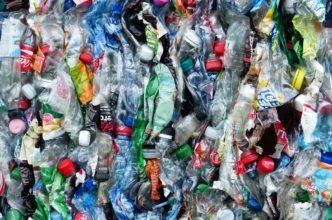 plastic-bottles-pix