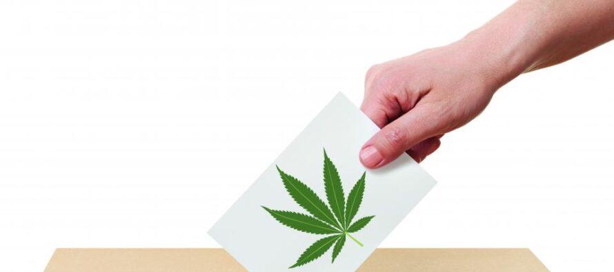 Marijuana legale, la svolta possibile degli States