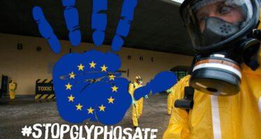 Glifosato: ancora nessuna decisione europea sul pesticida