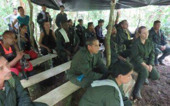 Diploma ai primi 37 ex guerriglieri FARC a Cali