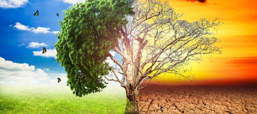 Con il cambiamento del clima, devono cambiare anche le politiche