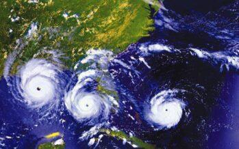 La violenzadi Irma