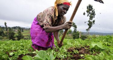 La fuga di capitali che devasta e impoverisce l'Africa