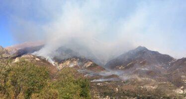 La Val di Susa brucia. L'incendio infinito assedia ormai i paesi