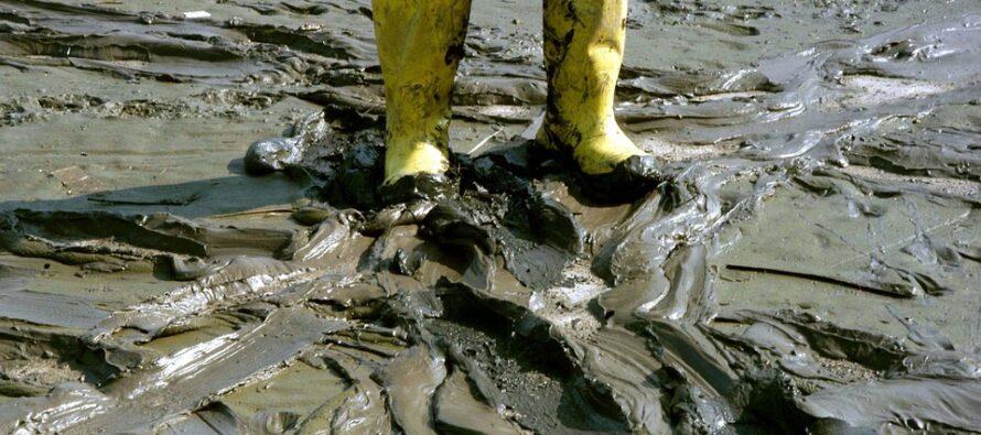 Rapporto di Legambiente. Alluvioni e frane, l'Italia a rischio quotidiano