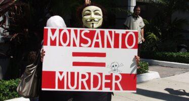 Una condanna miliardaria negli Stati Uniti per Bayer-Monsanto