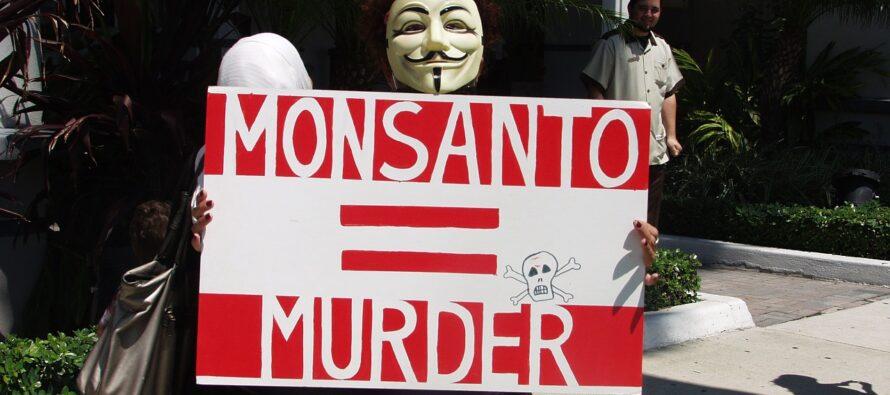 Monsanto condannata a risarcire malato terminale, erbicida cancerogeno