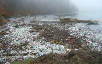 Inquinamento, fiumi, laghi e acque profonde saturi di pesticidi