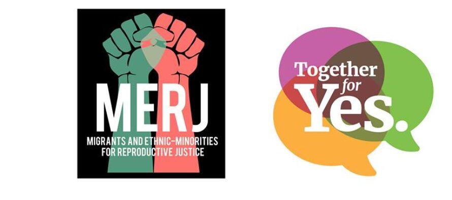 Irlanda, referendum sull'aborto. La ferocia dell'emendamento sulle donne migranti