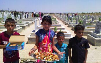 Return to Kobane – Part One
