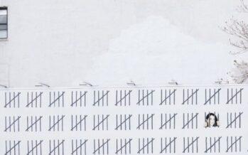 Zehra Dogan: «Caro Banksy, ti scrivo dalla cella Ma grazie a te adesso sono forte»