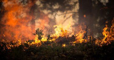 Grecia.L'Attica brucia, il villaggio Mati in cenere