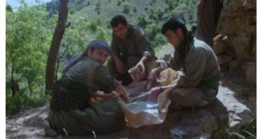 Un libro di poesie dal Kurdistan per apprezzare il valore della libertà