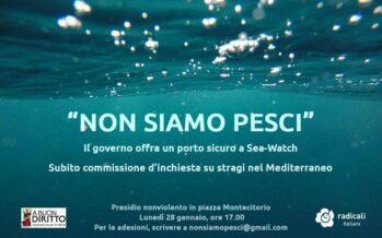 la sfida alla democrazia e al senso di umanità di Salvini e dei galoppini a 5 stelle