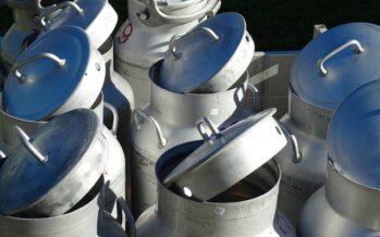 Sardegna. Firmato l'accordo sul prezzo del latte: da marzo a 74 centesimi